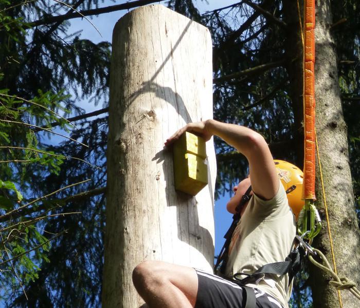 High Pamper Pole